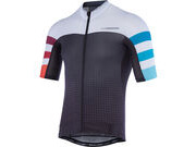MADISON RoadRace Premio men's short sleeve jersey, black/red/blue stripes Ltd